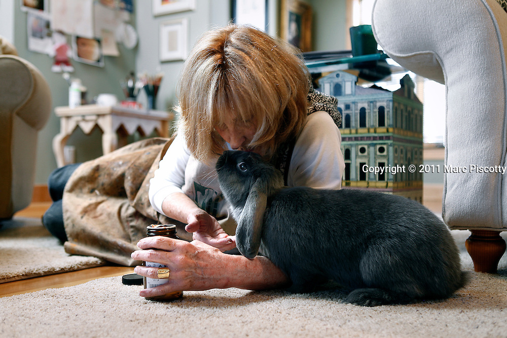 "SHOT 12/20/11 1:37:21 PM - Artist Beverly Endsley gives a few treats to ""Angelina"", one of her rescue rabbits in her studio in Evergreen, Co. Endsley has painted many of the rabbits and other animals she has rescued over the years. She sketches as well as paints in watercolor and oils and often shares her studio space with her two Bernese Mountain Dogs or any one of ten rabbits she has in rescue at the moment. (Photo by Marc Piscotty /  © 2011)"