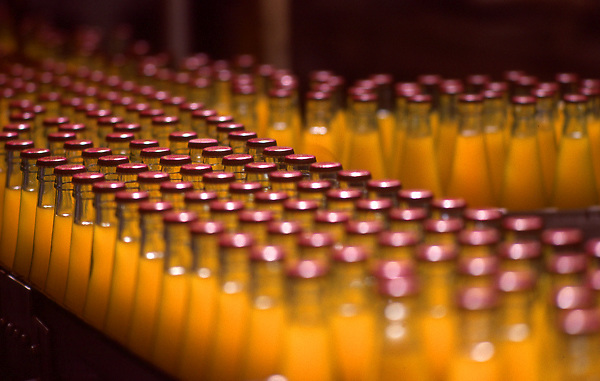 Stock photo of a bottles of orange soda coming down the factory line