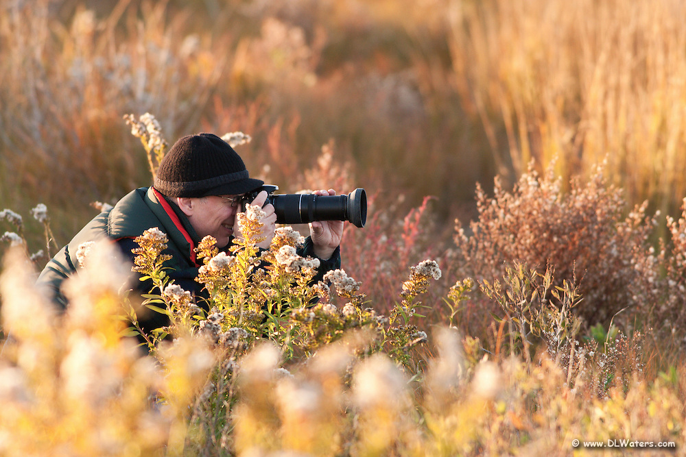 Fall photographer photographing birds at Chincoteague Virginia.
