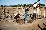Zimbabwe, Action Aid, Boy collects water from Action Aid / Zela water pump.<br /> Stanley Mukutyu (11), lives alone with her 15-year-old uncle middle of a historically severe drought. Stanley knows he must be away from his home before climate change destroys his dreams. His mother Edith left to South Africa to earn money.
