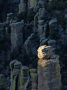 A rhyolite formation bathed in morning's first light at Chiricahua National Monument, Arizona.