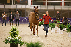 Lutkemeier Fabienne, (GER), D Agostino 5<br /> Horse Inspection<br /> Reem Acra FEI World Cup Dressage Finals 2016<br /> © Hippo Foto - Dirk Caremans<br /> 24/03/16