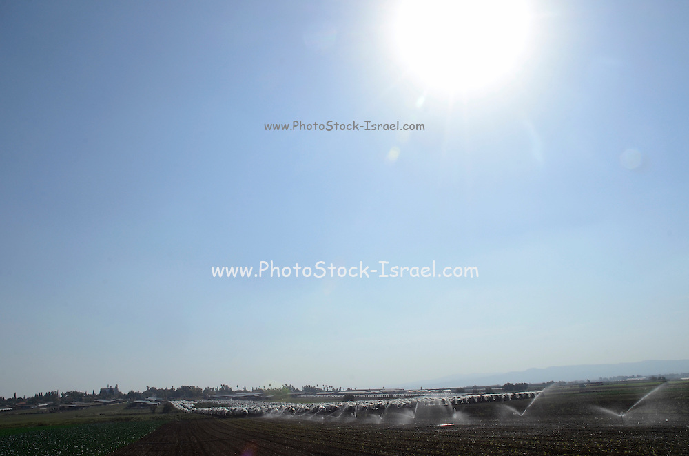 Modern Irrigation techniques Photographed in Nahalal, Israel