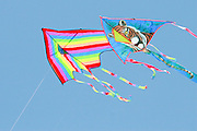 2 kites flying in a blue sky