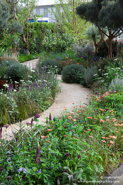 The Winton Beauty of Mathematics Garden. Design: Nick Bailey