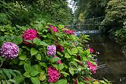 People walk across a hanging bridge at Mount Usher Gardens in Ashford, County Wicklow, Ireland.