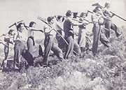 Female Jewish Pioneers (Chalutzot) Marching joyfully to work in a field. Photographed in Palestine / Israel circa 1940