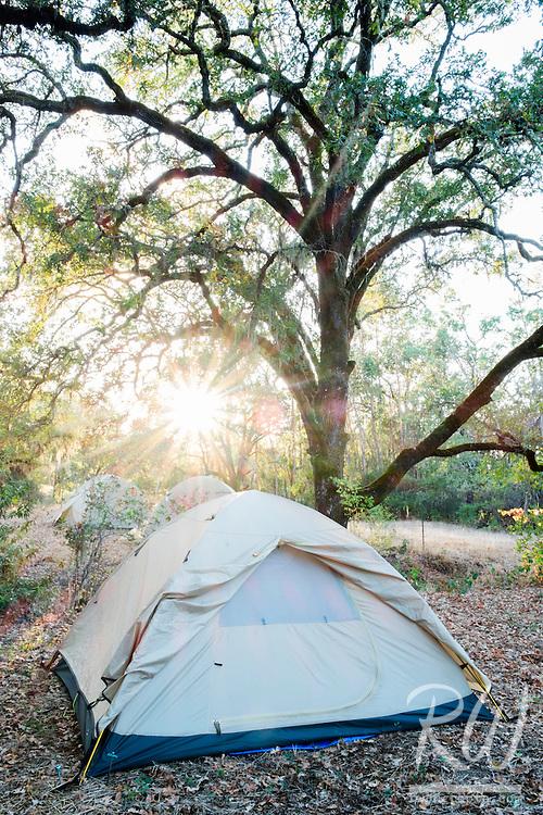Backroads Tents at Thunderbird Ranch, Healdsburg, California