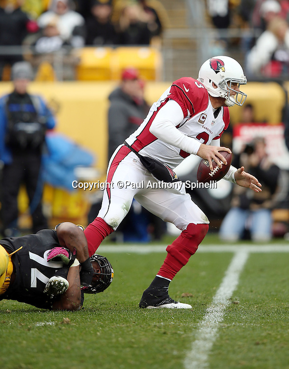 Arizona Cardinals quarterback Carson Palmer (3) gets sacked by Pittsburgh Steelers outside linebacker James Harrison (92) for a third quarter loss of 7 yards during the 2015 NFL week 6 regular season football game against the Pittsburgh Steelers on Sunday, Oct. 18, 2015 in Pittsburgh. The Steelers won the game 25-13. (©Paul Anthony Spinelli)