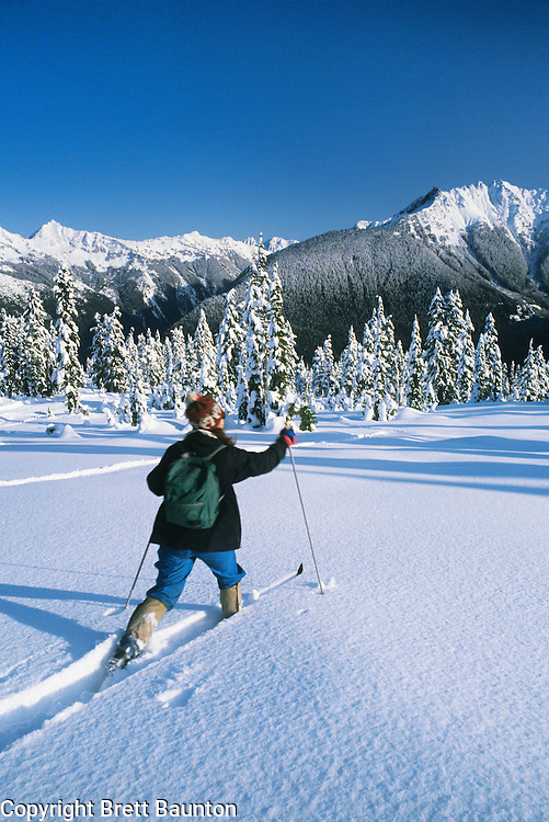 Mt. Baker, Cross Country Skiing, Winter
