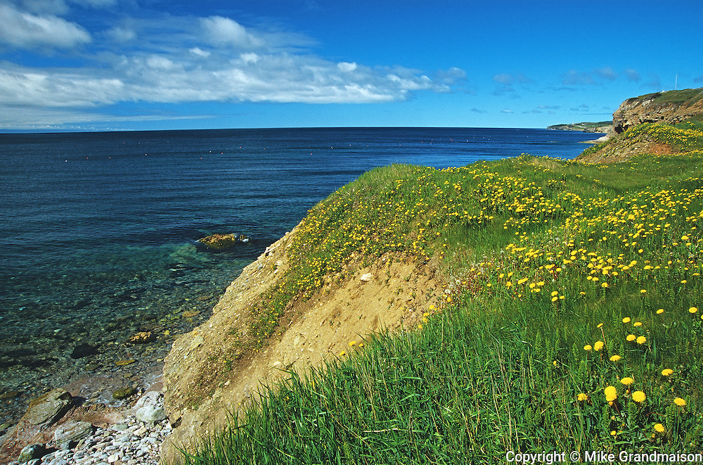 Along St. George's Bay<br /> Port-au-Port Peninsula<br /> Newfoundland & Labrador<br /> Canada