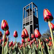 Netherlands Carillon | Arlington VA