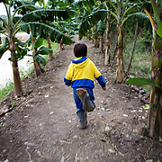 A young boy runs through an avenue of banana trees that line the canals of the raised fields or camellones. Areas of Bolivia have adopted this ancient technique of farming that effectively sustains crops through both the dry and raining seasons.<br />
