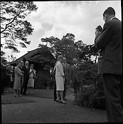 11/06/1961<br />