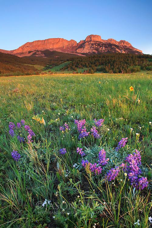 Sawtooth Range, Rocky Mountain Front