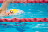 PBS Swim and Dive