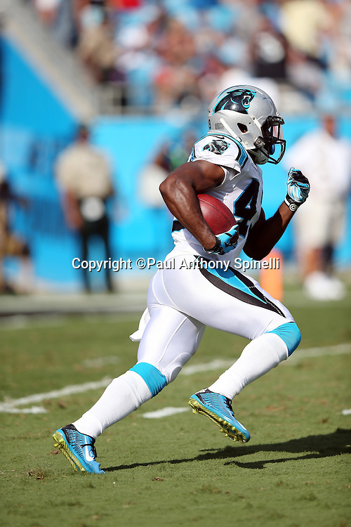 Carolina Panthers running back Fozzy Whittaker (43) returns a fourth quarter kickoff to the 29 yard line during the 2015 NFL week 2 regular season football game against the Houston Texans on Sunday, Sept. 20, 2015 in Charlotte, N.C. The Panthers won the game 24-17. (©Paul Anthony Spinelli)