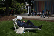 Man resting in the Giardini, Venice Biennale, 10 May 2017