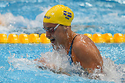 Jennie Johansson of Sweden on her way to a gold medal in the 50m Breaststroke on day 14 of the 33rd  LEN European Aquatics Championship Swimming Finals 2016 at the London Aquatics Centre, London, United Kingdom on 22nd May 2016. Photo by Martin Cole.