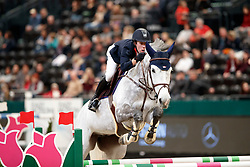 Vleuten, Maikel van der (NED) Dana Blue<br /> Leipzig - Partner Pferd 2017<br /> © Stefan Lafrentz