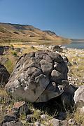 The shoreline of Abert Lake, a large inland salt water (alkalai) lake in Southern Oregon.