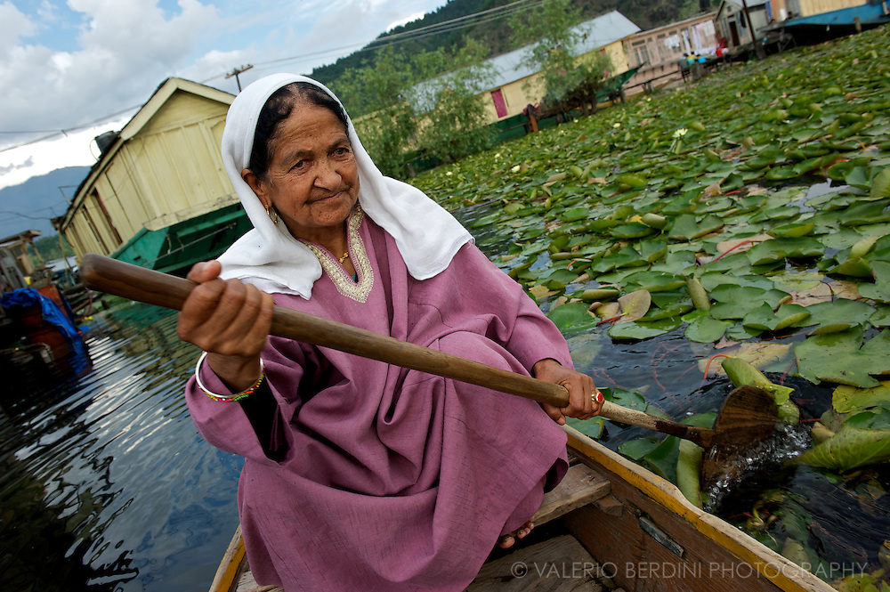 A woman rows on a bed of water lilies to her house floating on Dal Lake Srinagar. Kashmir. India