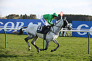 CASTLETOWN (11) ridden by Thomas Wilmott and trained by Pauline Robson winning The Purvis Marquees Racing Excellence Hands & Heels Finale Handicap Hurdle Race over 2m 4f (£16,800) and passes the WINNING POST during the Scottish Grand National race day at Ayr Racecourse, Ayr, Scotland on 13 April 2019.