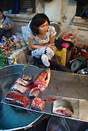 Hanoi, Vietnam, October 2008. A woman sells fish from her stall. Several streetmarkets serve the population of Hanoi.  Vietnam is an upcoming player in the travel industry. Photo by Frits Meyst/Adventure4ever.com