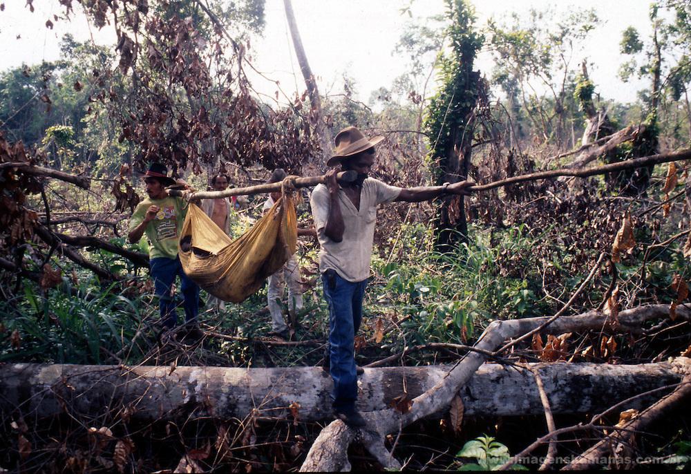 trabalhador rural assassinado por pistoleiro no estado do tocantins na fazenda chichalkrin