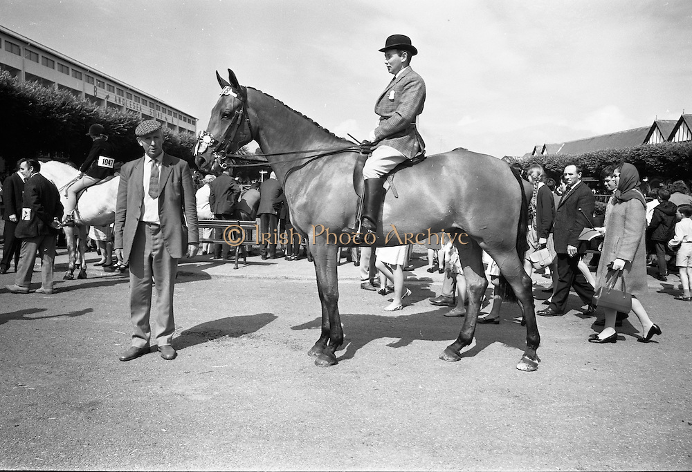 """09/08/1967<br /> 08/09/1967<br /> 09 August 1967<br /> R.D.S. Horse Show 2nd day at Balls bridge, Dublin. Photo shows Mr. Gerry Callaghan riding """"Piltdown"""" the property of Mr. Oliver McConnell, Dromore, Omagh Co. Tyrone."""