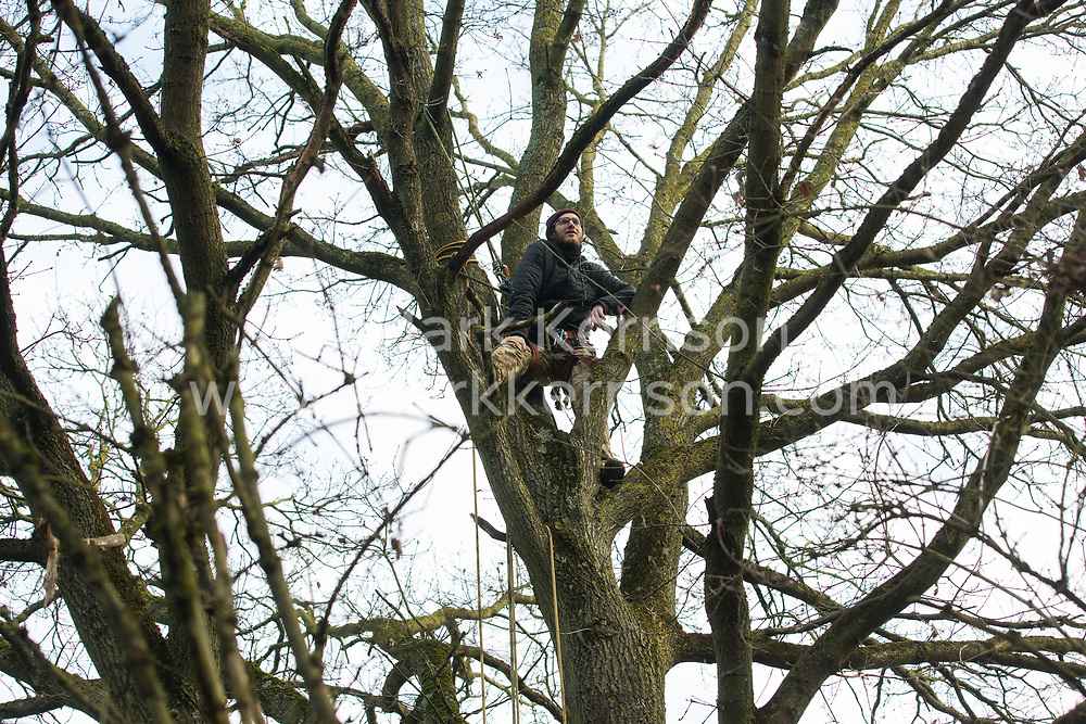 Harefield, UK. 20 January, 2020. An activist climbs a tree at the Colne Valley wildlife protection camp. Extinction Rebellion, Stop HS2 and Save the Colne Valley had reoccupied the camp two days before as part of an ongoing attempt to protect ancient woodland threatened by the HS2 high-speed rail link after a small group of Stop HS2 activists had been evicted by bailiffs over the course of the previous two weeks. 108 ancient woodlands are set to be destroyed by the high-speed rail link.