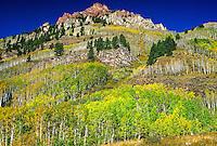 Road to Maroon Bells, near Aspen, Colorado USA