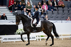 VILHELMSON SILFVÉN Tinne (SWE), Don Auriello<br /> Göteborg - Gothenburg Horse Show 2019 <br /> FEI Dressage World Cup™ Final I<br /> Int. dressage competition - Grand Prix de Dressage<br /> Longines FEI Jumping World Cup™ Final and FEI Dressage World Cup™ Final<br /> 05. April 2019<br /> © www.sportfotos-lafrentz.de/Stefan Lafrentz