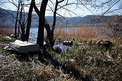 Monticchio Laghi (PZ) 12.03.2011 - Il degrado dei laghi di Monticchio (PZ). Alcuni bidoni arruginiti abbandonati sulla sponda del lago grande.