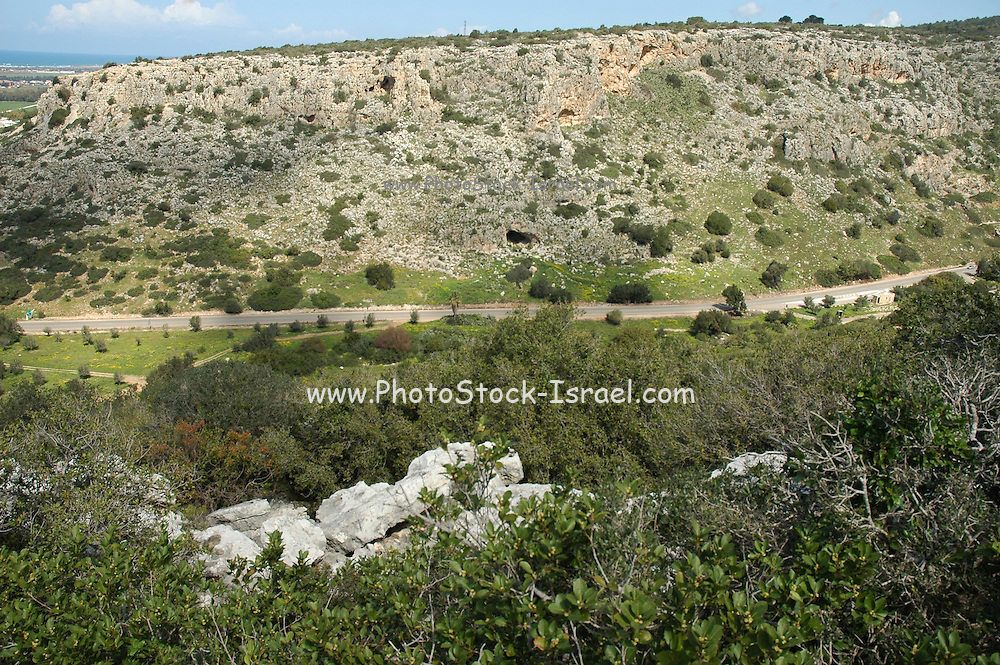 Israel, Carmel Mountain, Nahal Mearot (Cave River) nature reserve containing caves used by prehistoric men for 150 thousand years in three distinct cultures Acheulian culture, Muarian culture and mousterian culture. starting with Homo erectus and ending with Neanderthal