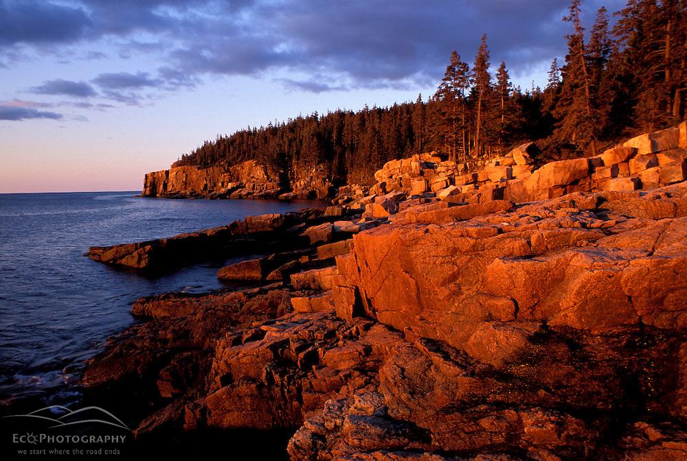 Otter Cliffs, Acadia N.P., ME. The rocky Maine coast.