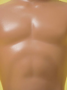 chest of muscular male doll