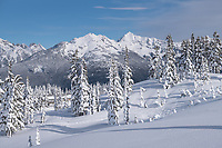 Goat Mountain in winter seen from Heather Meadows Reacreation Area, North Caascades Washington