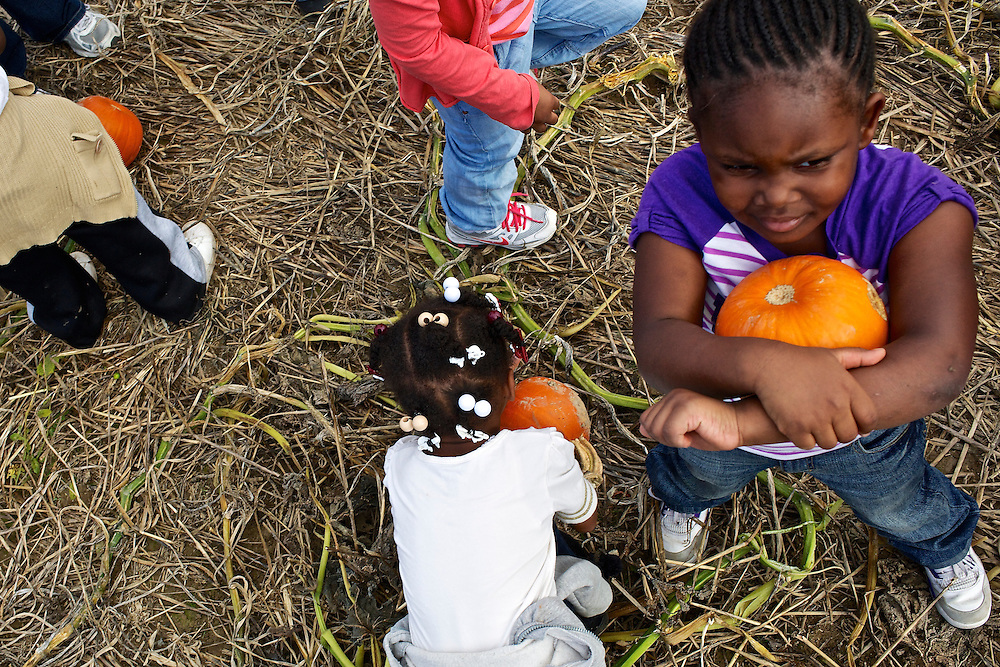 "Calvin Rodwell Elementary School students select a pumpkin to take home at Summers Farm in Frederick, MD on Oct. 24, 2012. The visit to the farm was part of a ""Common Core"" reading and learning unit for their class, which aims to follow up non-fiction reading with learning in the field. The day prior the children read a book about going to a farm."