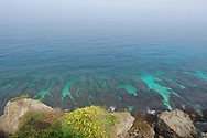 There are abundant coral reefs just off the coast of Xiaoliuqiu.