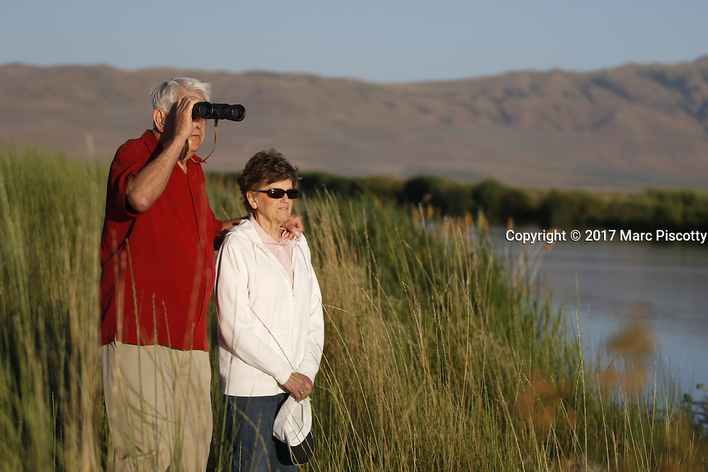 SHOT 6/30/17 5:50:35 AM - Bear River Migratory Bird Refuge is a 74,000-acre National Wildlife Refuge in Utah, established in 1928. The refuge encompasses the Bear River and its delta where it flows into the northern part of the Great Salt Lake in eastern Box Elder County. The refuge includes the James V. Hansen Wildlife Education Center and a one-way 12 mile auto route. Also includes images of fruit stands along Utah's Fruit Belt and Peach City Restaurant in Brigham City. (Photo by Marc Piscotty / © 2017)