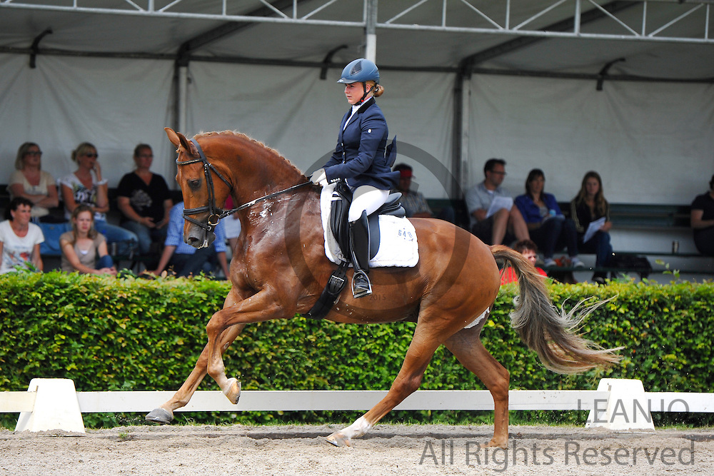 Robin Beekink - Dakota Zee T<br /> KWPN Paardendagen 2012<br /> © DigiShots - Esmee van Gijtenbeek