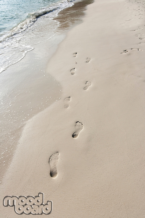 Footprints in sand on beach; Koh Pha Ngan; Thailand