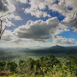 The lush and green jungle of Cockscomb National reserve seen from a hilltop, Cockscomb National reserve, Belize.