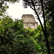 The top of Temple 2 (Temple of the Masks) is framed by the thick jungle trees in the Tikal Maya ruins in northern Guatemala, now enclosed in the Tikal National Park.