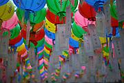 """Für die Feierlichkeiten von Buddhas Geburtstag (2. Mai diesen Jahres) werden Tempel mit bunten Lampions dekoriert. Aus den Laternen haengen Papierstreifen mit Wünschen. Fast jeder Besucher kauft sich einen Wunschzettel, der dann mit Namen und Wunsch beschriftet an einem Lampion befestigt werden.<br /> <br /> In Korea the birthday of Buddha is celebrated according to the Lunisolar calendar. This day is called """"Seokga tansinil"""", meaning """"the day of Buddha's birthday"""". Lotus lanterns cover the entire temples throughout the month. Visitors can buy a paper, write a wish to that paper and fix it with their name to a lantern."""