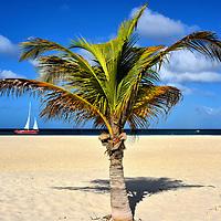 Caribbean Tour: Antigua - Saint Vincent