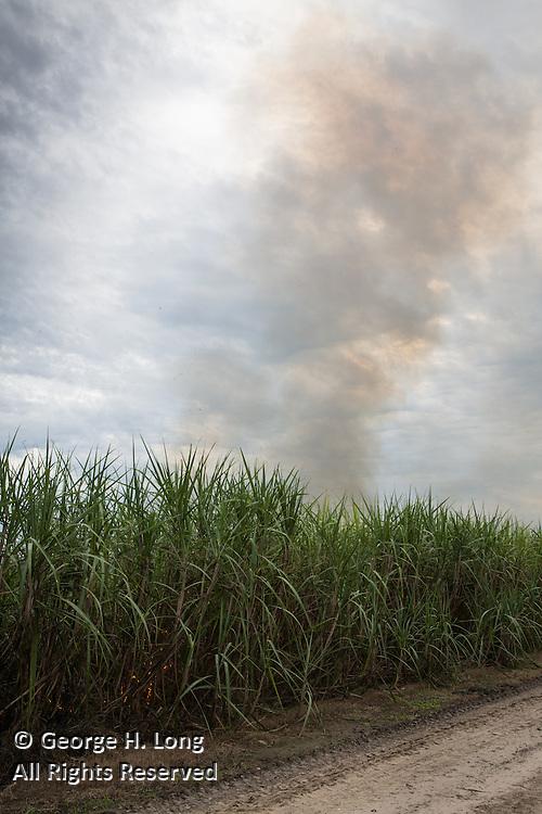Control burn in sugar cane fields; New Roads, Louisiana