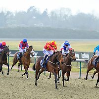 Lingfield 27th January
