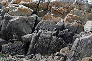 The Rocky Intertidal Zone at Burgoyne Bay Provincial Park on Salt Spring Island, British Columbia, Canada